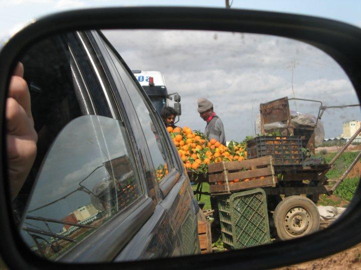 Apelsinai Maroke